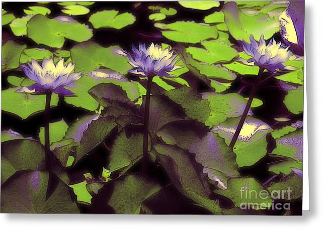 Lilly Pads Greeting Cards - Monets Lillies Greeting Card by Karen Lewis