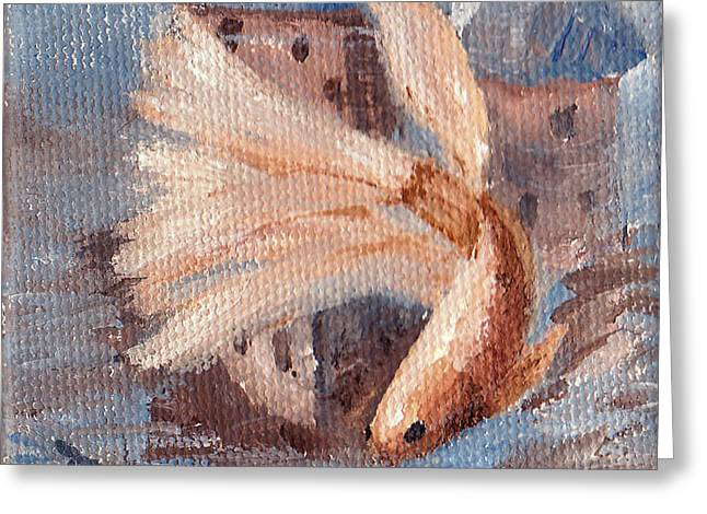 Betta Greeting Cards - Mongo Betta Fish Greeting Card by Brenda Thour