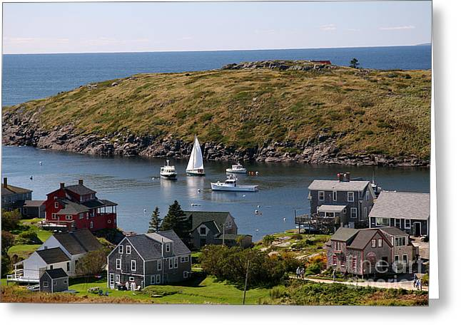 Boothbay Harbor Greeting Cards - Monhegan Island Sails Greeting Card by Brenda Giasson