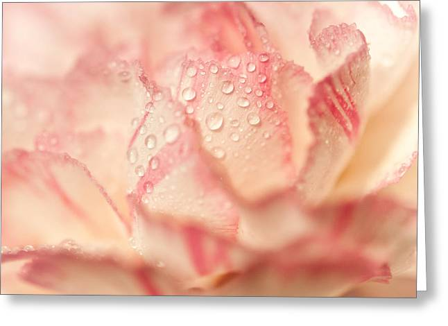 Moning Freshness. Natural Watercolor. Touch Of Japanese Style Greeting Card by Jenny Rainbow