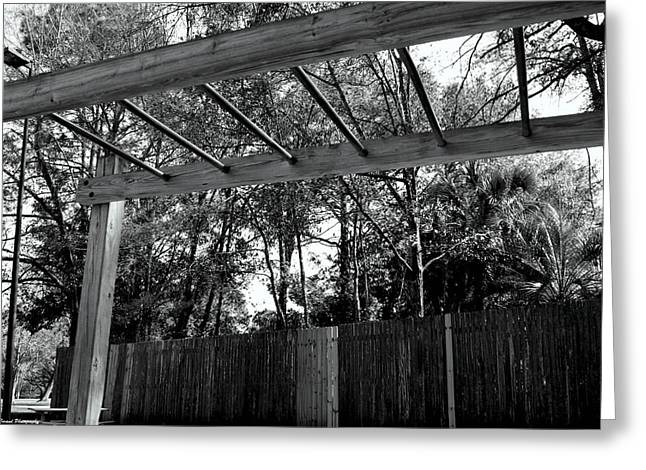 Missing Child Greeting Cards - Monkey Bars Greeting Card by Debra Forand