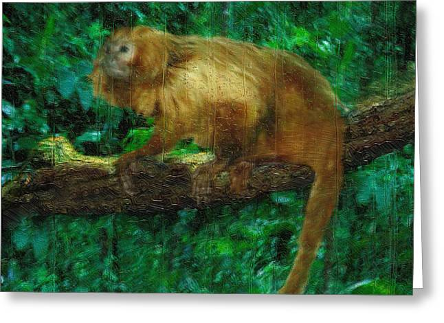 Monkey Of The Rainforest  Greeting Card by Jack Zulli