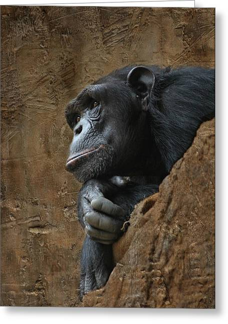 Monkey Portraet Greeting Card by Heike Hultsch