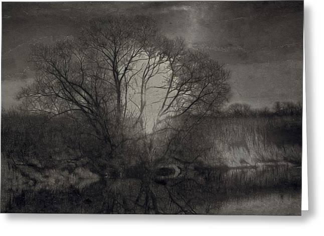 Monochrome Artistic Creek Tree Greeting Card by Leif Sohlman