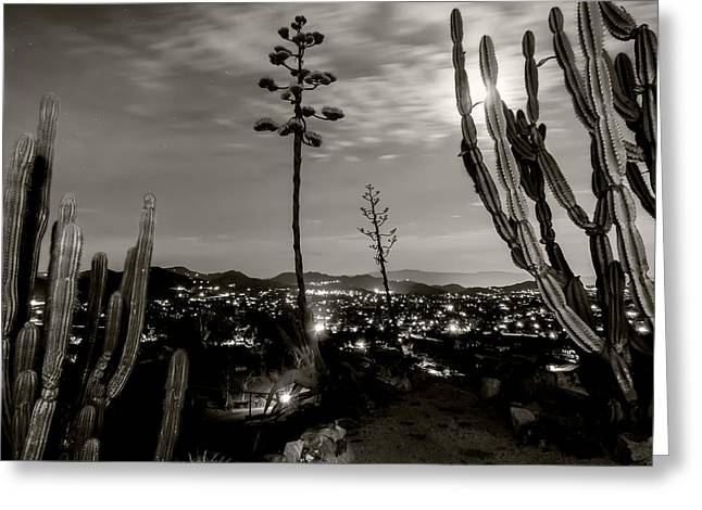 City Lights Pyrography Greeting Cards - Monochrome In The Valley Greeting Card by Colin Houck