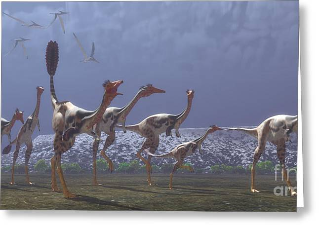 Hunting Bird Greeting Cards - Mononykus Dinosaurs Greeting Card by Corey Ford