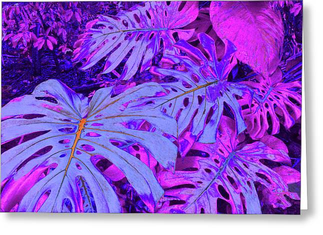 Monstera Leaves - In Violets Greeting Card by Kerri Ligatich