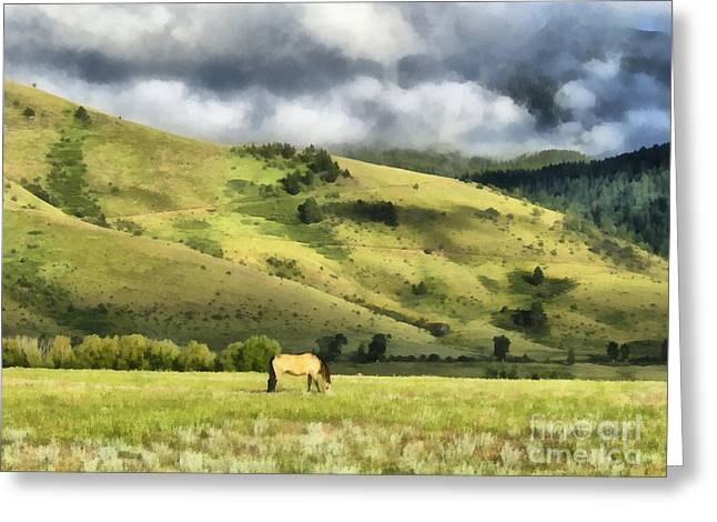 Pasture Digital Greeting Cards - Montana Ranch Landscape Greeting Card by Edward Fielding