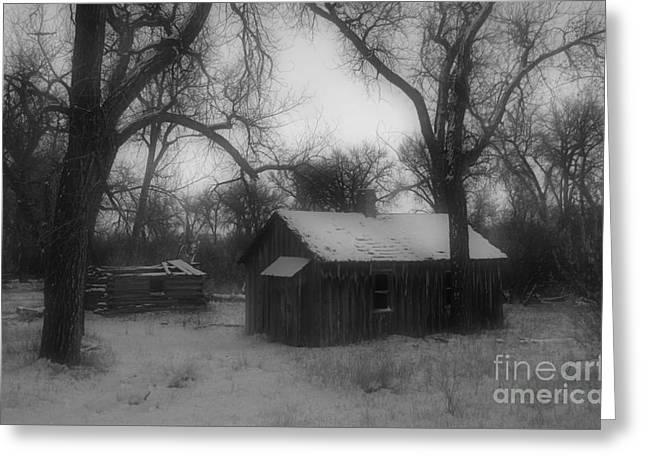 Montana Winter Twilight Bw Greeting Card by Chalet Roome-Rigdon