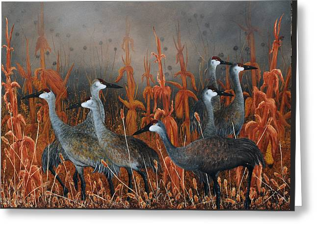 Monte Vista Greeting Cards - Monte Vista Sandhill Cranes Greeting Card by Mike Ross