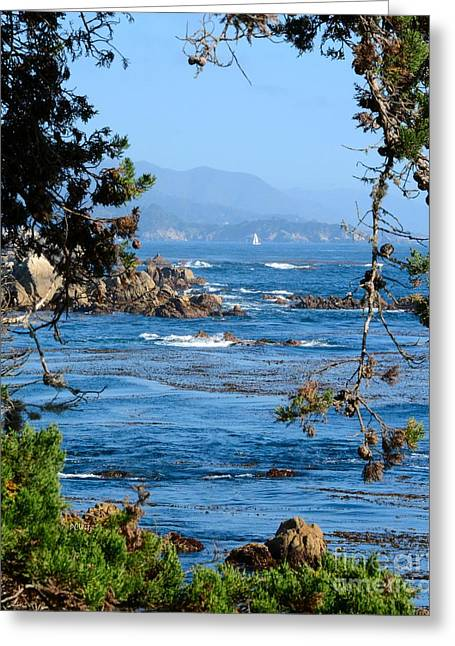Blue Green Wave Greeting Cards - Monterey Coast Greeting Card by Patrick Witz
