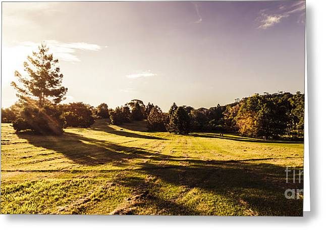 Montville Afternoon Landscape Greeting Card by Jorgo Photography - Wall Art Gallery