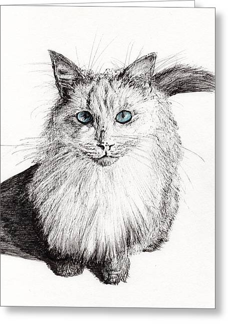 Paws Drawings Greeting Cards - Monty Greeting Card by Vincent Alexander Booth