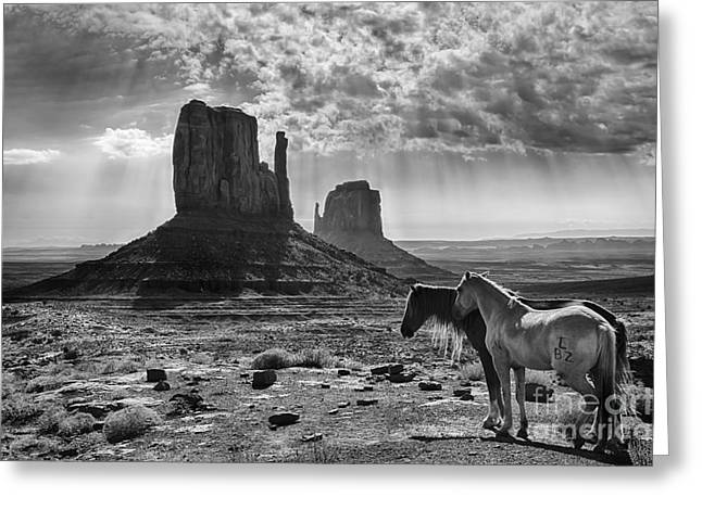 The Horse Greeting Cards - Monument Valley Horses Greeting Card by Priscilla Burgers