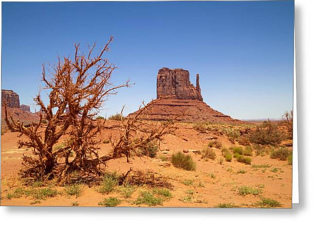 Monument Valley West Mitten Butte And Landscape Greeting Card by Melanie Viola