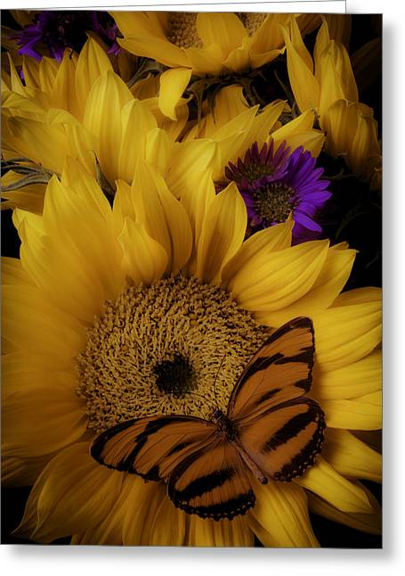 Moody Sunflower Greeting Card by Garry Gay