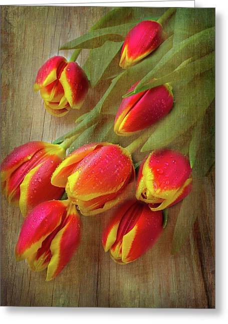 Moody Testured Tulips Greeting Card by Garry Gay