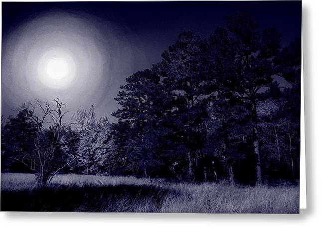 Moon and Dreams Greeting Card by Nina Fosdick