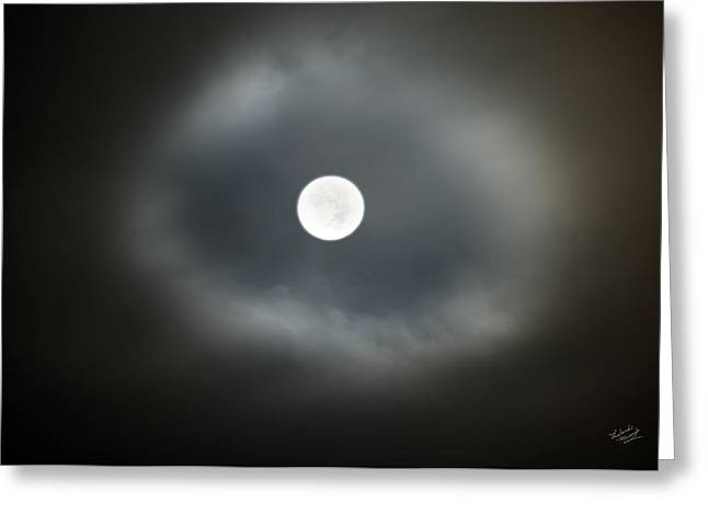 Moon Glow Greeting Card by Leland D Howard