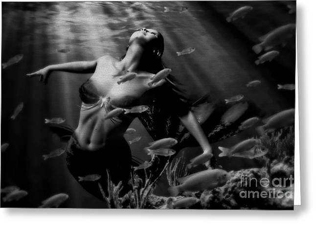 Artistic Photography Greeting Cards - Moon Light Greeting Card by Lolita Ronalds