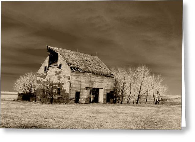 Barn Digital Greeting Cards - Moon lit Sepia Greeting Card by Julie Hamilton