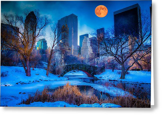 Blizzard Scenes Greeting Cards - Moon Over Central Park Greeting Card by Elle Kriser