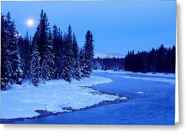 Moonrise Greeting Cards - Moon Rising Above The Forest, Banff Greeting Card by Panoramic Images