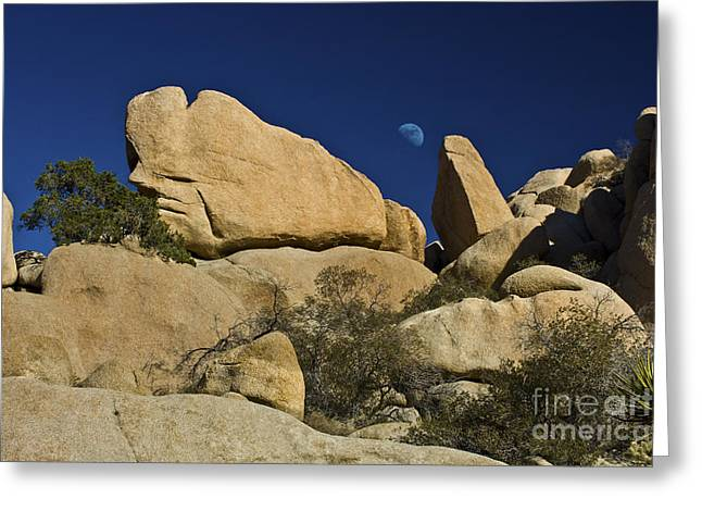 Geology Photographs Greeting Cards - Moon Rising over Indian Rock Greeting Card by Photography by Laura Lee