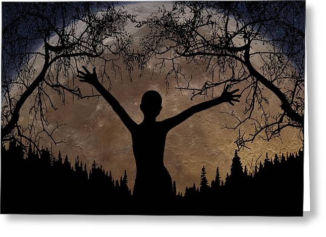 Tree Lines Digital Greeting Cards - Moon Rising Greeting Card by Peter Piatt