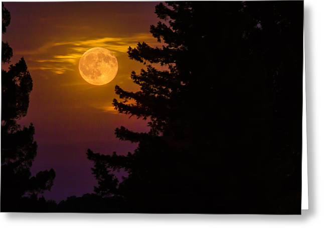 Moon View Greeting Card by Garry Gay