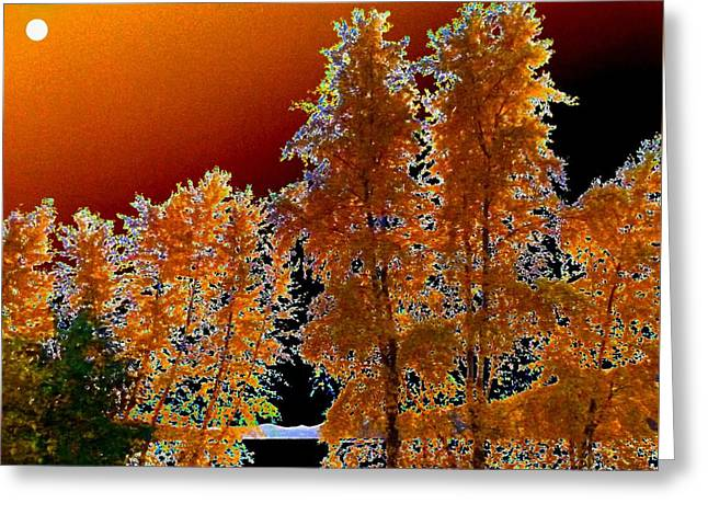 Moonglow Greeting Cards - Moonglow Brilliance Greeting Card by Will Borden