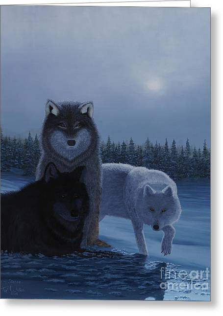 Snow Tree Prints Greeting Cards - Moonlight Wolves Greeting Card by Stanza Widen