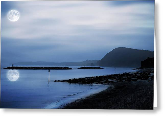 Devon Greeting Cards - Moonlit beach  Greeting Card by Jaroslaw Grudzinski