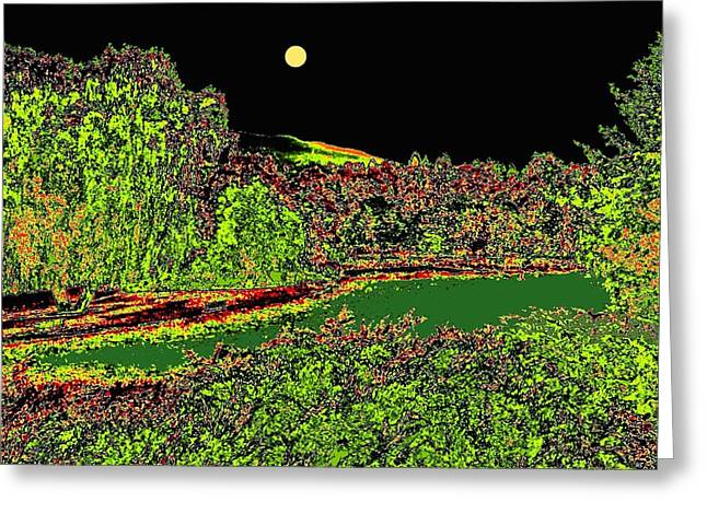 Moonlit Night Greeting Cards - Moonlit Kaloya Park Greeting Card by Will Borden