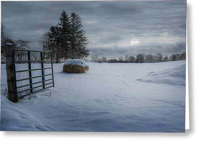 Moonrise Greeting Cards - Moonlit Winter Pasture Greeting Card by Bill Wakeley