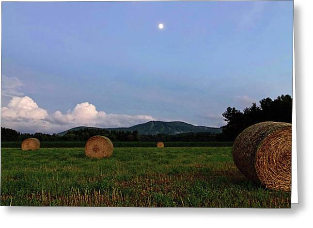 Moonrise Hayfield Greeting Card by Jerry LoFaro