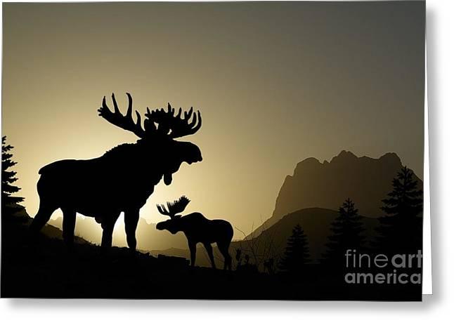 Moose Sunset Greeting Card by Anthony Djordjevic