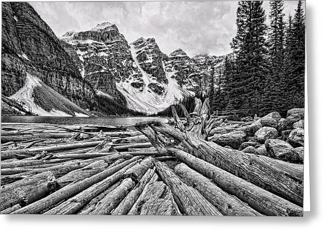 Nature Greeting Cards - Moraine Lake Driftwood No 1 Greeting Card by Stephen Stookey