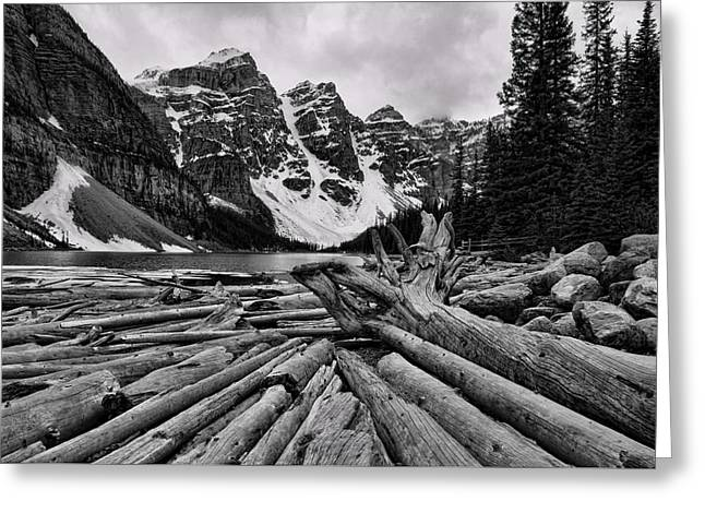 Mountain Valley Greeting Cards - Moraine Lake Driftwood No 2 Greeting Card by Stephen Stookey