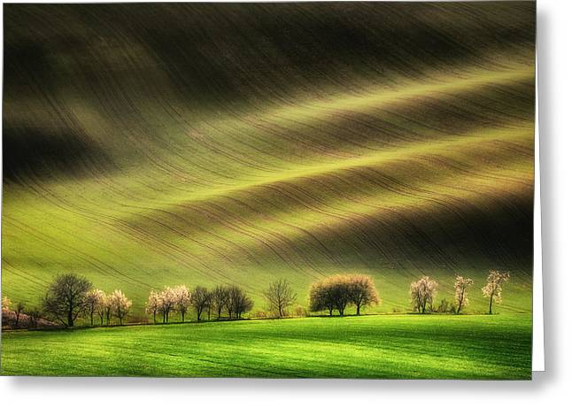 Moravian Fields Greeting Card by Piotr Krol (bax)