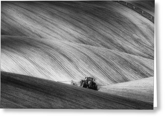 Monochrome Greeting Cards - Moravian Seeding Greeting Card by Piotr Krol (bax)