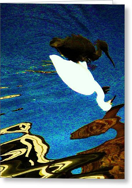 Yang Greeting Cards - More Than One Reflection Greeting Card by Daniele Smith