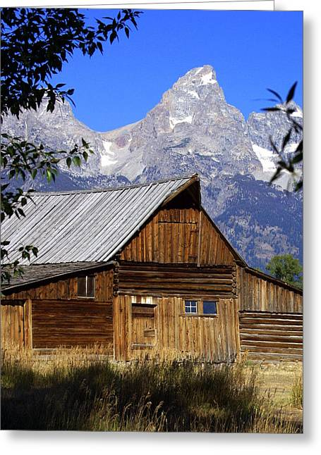 Marty Koch Greeting Cards - Mormon Row Barn  1 Greeting Card by Marty Koch
