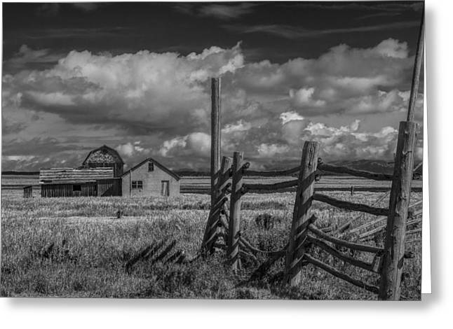 Randy Greeting Cards - Mormon Row Moulton Farm in Black and White Greeting Card by Randall Nyhof