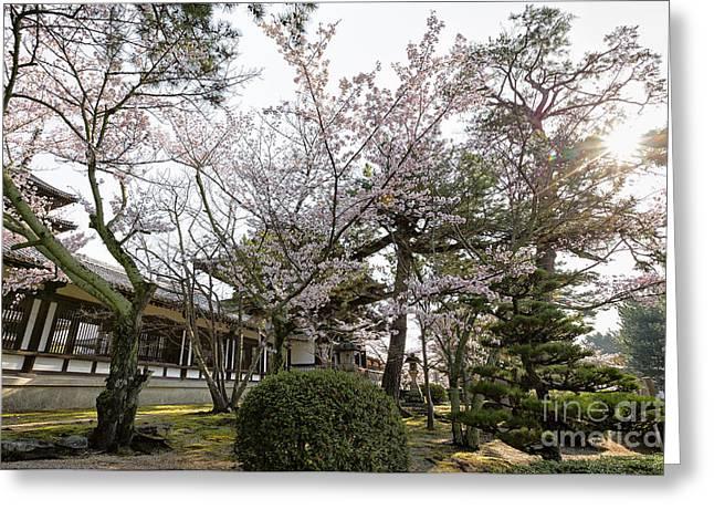 Horyuji Greeting Cards - Morning at Horyu-ji Temple Greeting Card by Rhonda Krause
