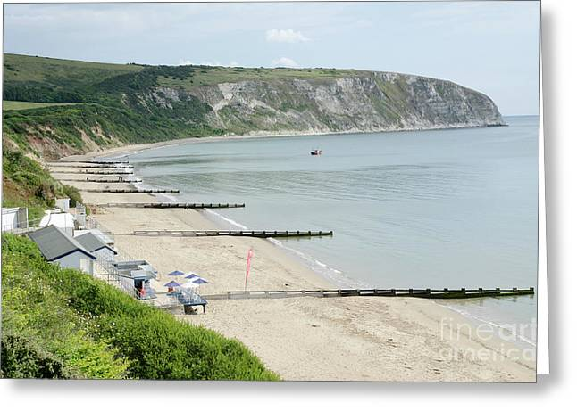 Sandy Greeting Cards - MORNING BAY looking up Swanage Bay on a summer morning beach scene Greeting Card by Andy Smy