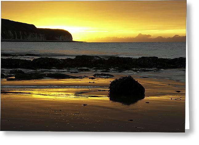 Enjoying Greeting Cards - Morning Beach Greeting Card by Svetlana Sewell