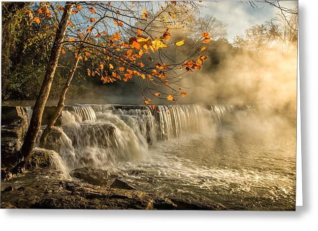 Morning Bliss Greeting Card by James Barber