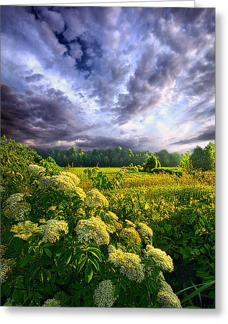 Journey Greeting Cards - Morning Creation Greeting Card by Phil Koch