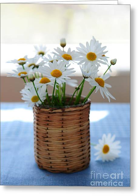 Table Greeting Cards - Morning daisies Greeting Card by Elena Elisseeva